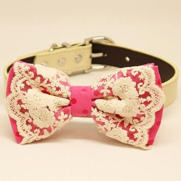 Hot Pink Lace dog bow tie collar, Dog collar, Ivory, Polka dots
