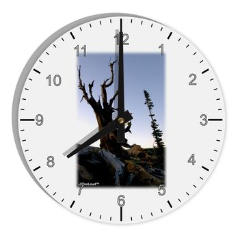 "Colorado Mountain Scenery 8"" Round Wall Clock with Numbers by TooLoud"