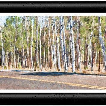 Aspen Trees Forest Coconino National Forest Painting Art -  5x7 Art Photo Prints; Wood Frame or Mat Frame