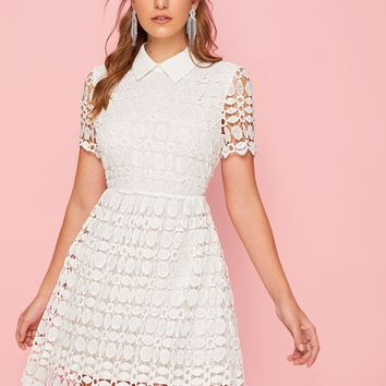 Collared Guipure Lace Overlay Flared Dress