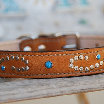 Kingman Saddle Tan Leather Dog Collar with Turquoise Rivets Scroll Design Rustic Bohemian Southwestern Boho Western Leather Dog Collar