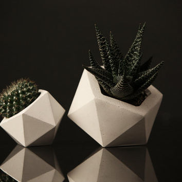 Set of 2: White Concrete Geometric Planters, Concrete Planter, Concrete Planters, Minimalist style, Planter, Concrete planter