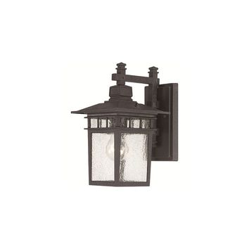 Nuvo Lighting Cove Neck 1 Light Outdoor Wall Lantern