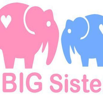 Big or Little Sister or Brother  Iron on by BabyLoveChunk on Etsy