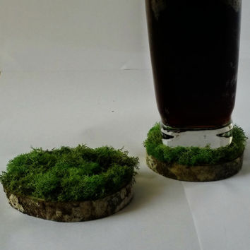 Moss and Wood Coasters Natural Home Decor Party