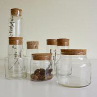 Various Sized Glass Apothecary Jars with Cork Tops