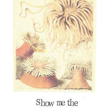 Show Me The Anemone Card Funny Marine Biology Pun Aquatic Humor Ocean Weird Nerdy Nature Natural History Birthday Stationery