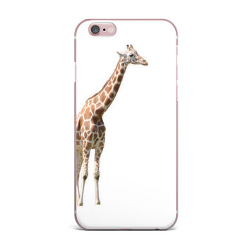 "Sylvia Coomes ""Giraffe"" Animals Photography iPhone Case"