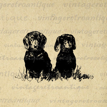 Two Dachshund Wiener Dogs Printable Digital Download Graphic Illustration Image Antique Clip Art for Transfers HQ 300dpi No.3474