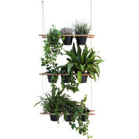 Compagnie Etcetera Window box - Vegetable screen