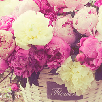 Flower Photo, Peony, Fine Art Photograph, Bouquet, Peonies, Pastel Pink, Shabby Chic Art, Spring, Cottage Art, Home Decor, Romantic,Delicate