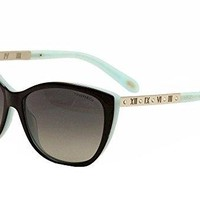 Tiffany Sun 0TF4094B Full Rim Cat Eye Woman Sunglasses