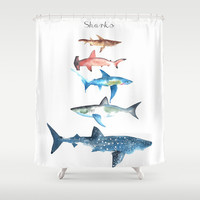 Sharks Shower Curtain by Amee Cherie Piek