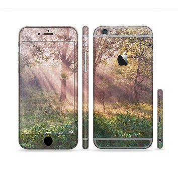 The Pink Sun Ray Meadow Sectioned Skin Series for the Apple iPhone 6 Plus