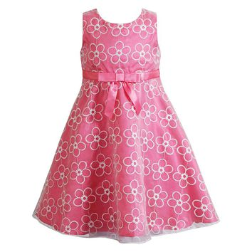 Youngland Embroidered Organza Dress - Toddler