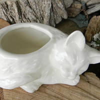 Cat  Planter Sleeping Kitten Kitty memorial Ceramic White ceramic glazed container succlents FLower Vase Sponge holder