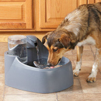 Top Paw™ Water Fountain for Dogs