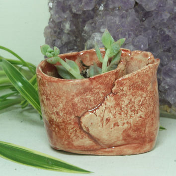Succulent planter  mini hand built pottery planter Easy Water planter Maroon