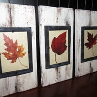 Distressed Wood Plank Frame Set of 3 for 4X6 Pictures - Shabby Cottage, Fall, Thanksgiving, Beach House, White, Rustic Barn