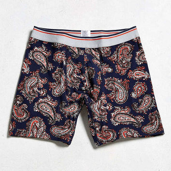 Paisley Boxer Brief   Urban Outfitters