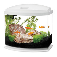 Aqueon MiniBow LED Desktop Fish Aquarium Kit 5 gal