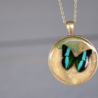 Resin Pendant blue butterfly necklace with Brass Chain Romantic and sweet necklace for her