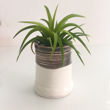 HDC#30 Air Plant Holder Vase -Firelight Pottery Home Decor Collection