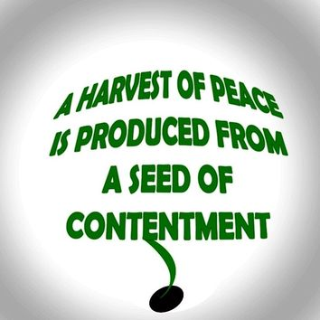 A harvest of peace is produced from a seed of contentment