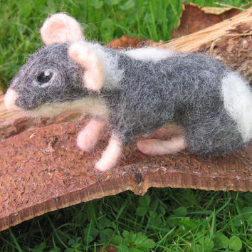 Needle felted rat. Needlefelt rat. needle felted animal. Soft sculpture. A mischievous little gray and white rat. Needle felted rat.