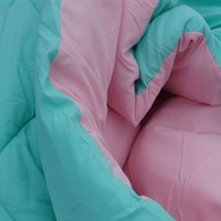 Minty Aqua/Calm Pink Reversible College Comforter - Twin XL Bedding