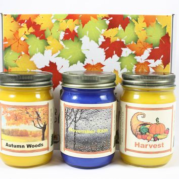 "Fall Scented Candle Collection, ""Fall Nature"", Harvest, Autumn Woods and November Rain Scents, Three 12 Ounce Candles"