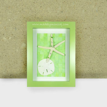 Starfish and Sand Dollar Shadow Box Framed Wall Beach Decor.   A Punch of Green Apple Color Tropical Inspired Accent Piece.