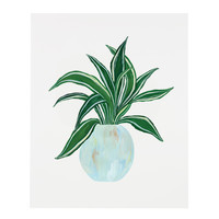 Dracaena House Plant Art Print Series