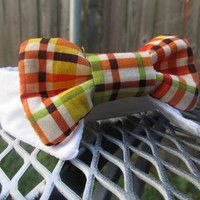 Dog Shirt Collar and Bow Tie - White Dog Collar and Fall Vibrant Plaid Plaid Bow Tie