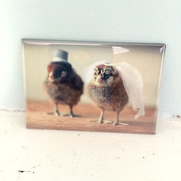 Chickens Wedding Chicks in Hats Rigid Rectangle Baby Animal Magnet