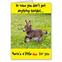 ' In case you don't get any... ' B-day/V-day/etc. Greeting Card
