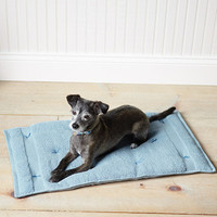 Cozy Travel Cushion for Pets - Introduction - MarthaStewart.com