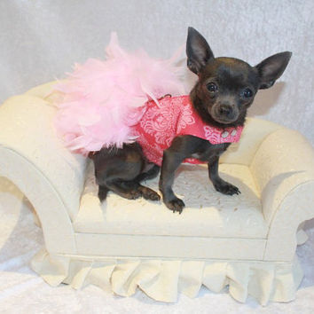 Pink Floral Feather Harness Dog Dress by KOCouture on Etsy