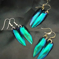 Iridescent Green, Blue, and Purple Beetle Wing Earrings