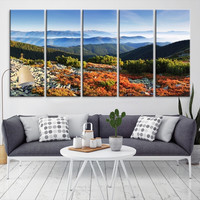 39523 - Forest Wall Art- Autumn Canvas Print- Forest Canvas- Forest Canvas Art- National Art Print- Canvas Print- Large Wall Art-