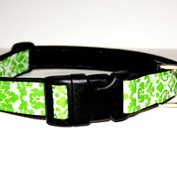 Green Dog Collar Adjustable sizes (M, L, XL)