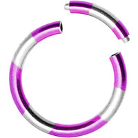 16 Gauge 5/16 Purple Silver Anodized Titanium Segment Ring | Body Candy Body Jewelry