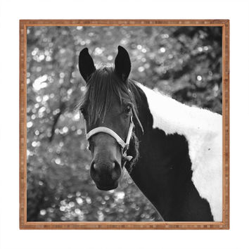 Allyson Johnson Horse Portrait Square Tray