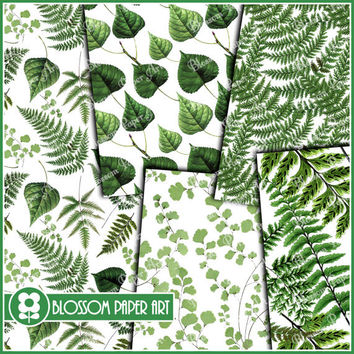 Green Leaves Paper - Printable Digital Collage Sheet  - Scrapbooking Pack - Decoupage - Printable - DIY - 1628