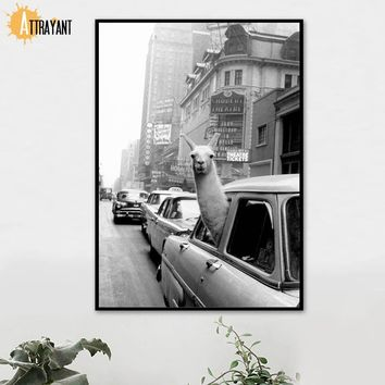 Llama Vehicle City Wall Art Canvas Painting Nordic Posters And Prints Animal Wall Pictures For Living Room Bedroom Home Decor