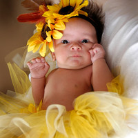 Sunflower Tutu and Hairbow Set - Baby, Newborn, Tutu, Hairbow, Costume, Photo Prop, Photography Prop