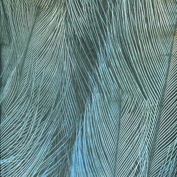 PEACOCK FEATHER TITANIUM CLOTH BACKDROP 10x10 - LCTC7358 - LAST CALL