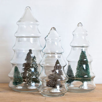 Instant Collection of Christmas Tree Apothecary Jars (Set of 3), Glass Diorama Ornament Containers