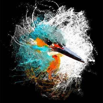 Kingfisher Wall art Splash digital download colourful bird nature print, Instant Download, Teal and Gold Kingfisher Wildlife art print