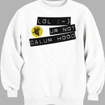 lol ur not calum hood Sweater for Mens Sweater and Womens Sweater *